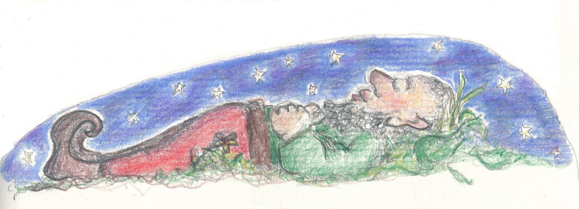 skry under stars1