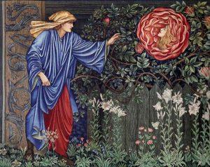 rose suitor